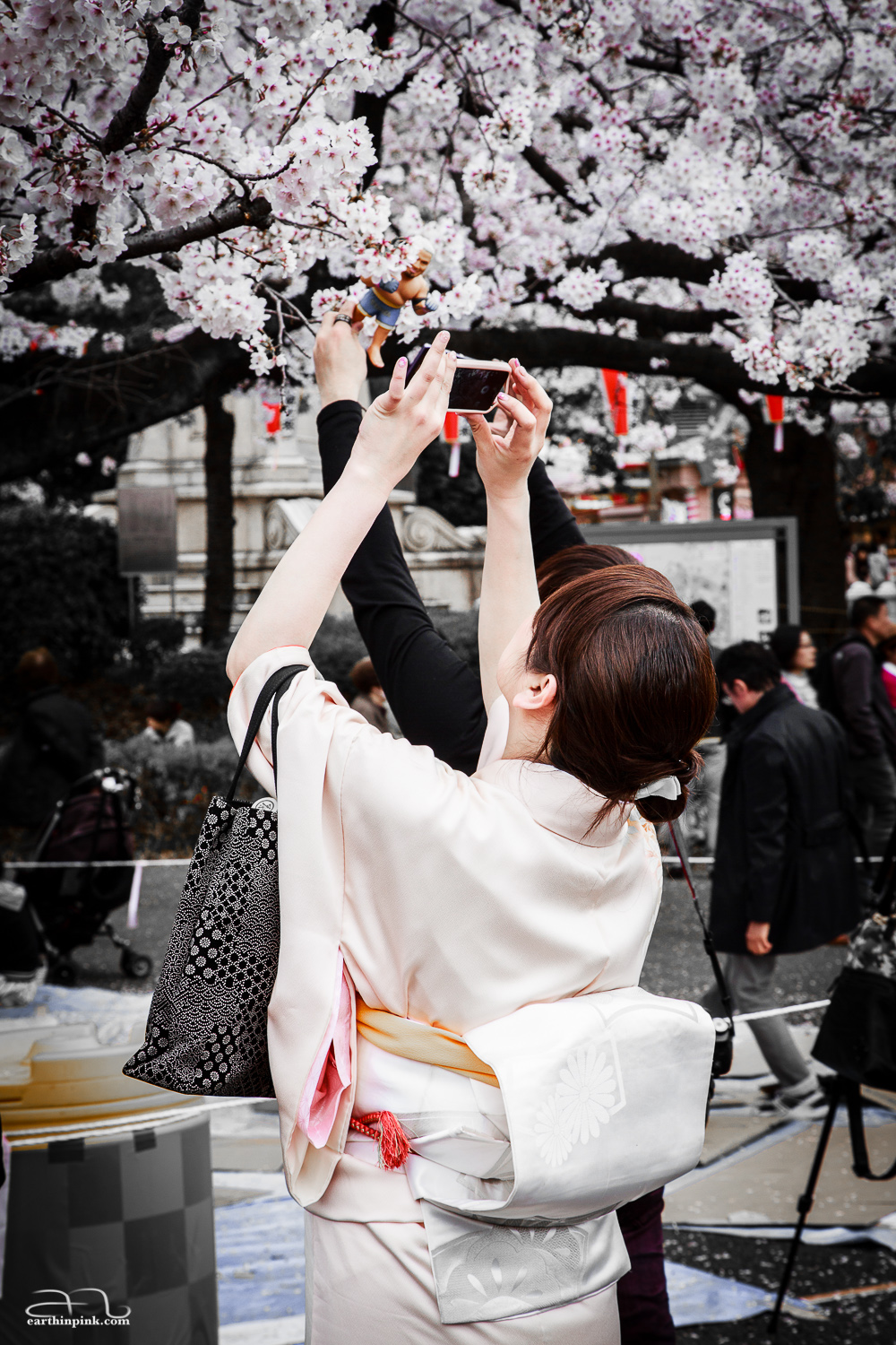 A woman dressed in a traditional kimono takes a photo of the cherry blossoms with her iPhone. Not sure why the little figurine of a boxer is part of the composition.