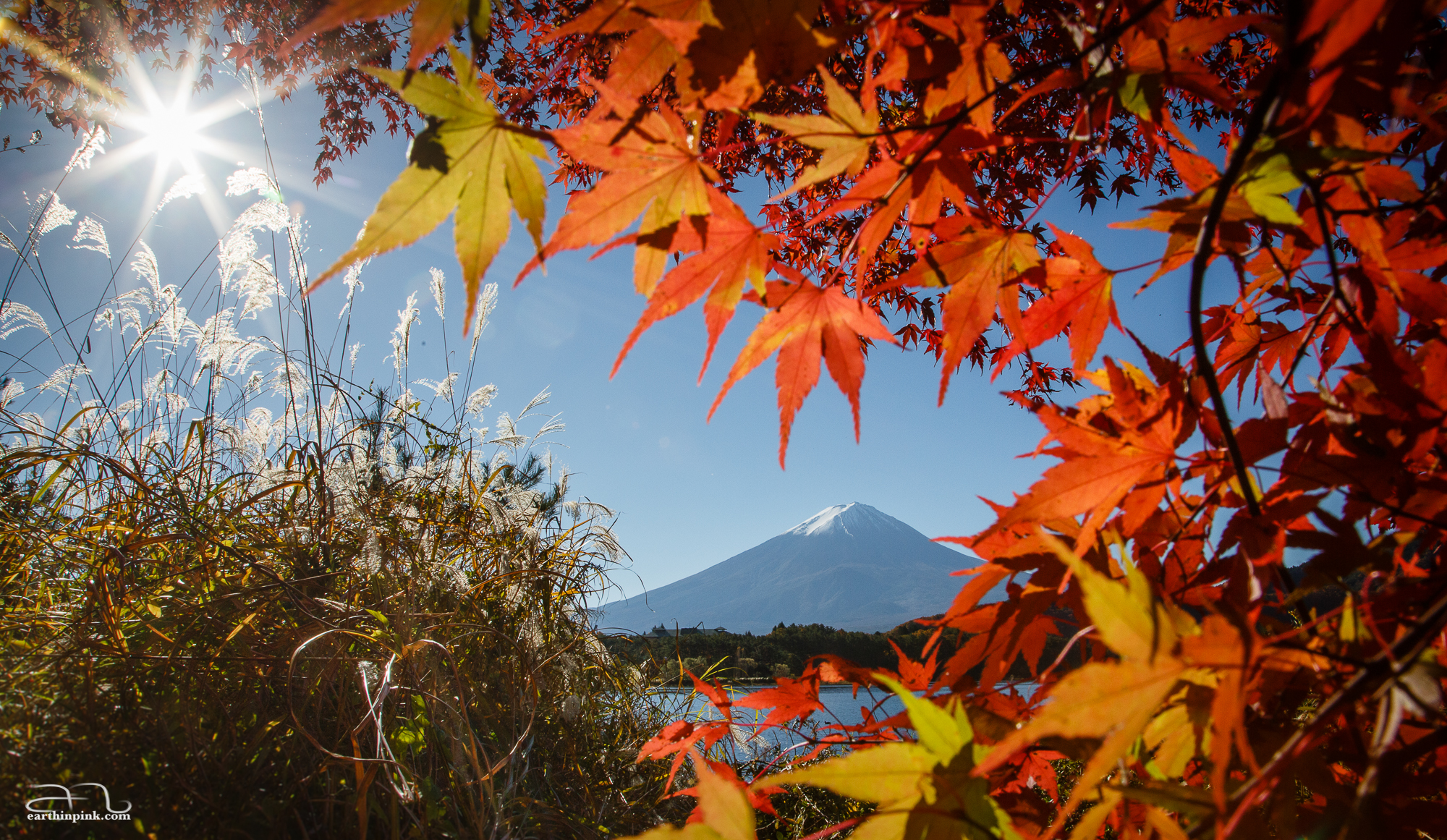 A morning view of colourful leaves, Mt. Fuji, and Lake Kawaguchiko.