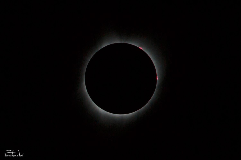 photo of an eclipse by Aurora Simonescu