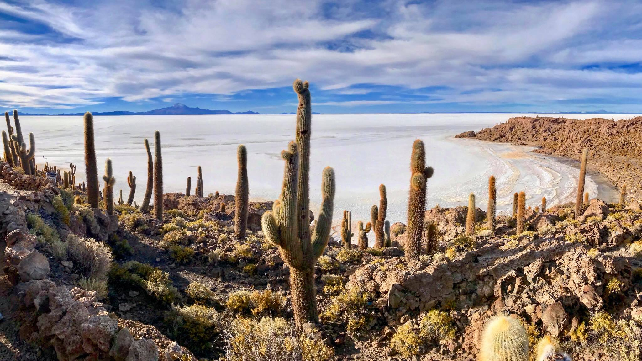 Incahuasi Island in the Uyuni salt flats.